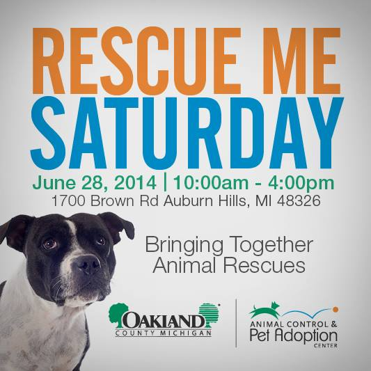 Rescue Me Saturday