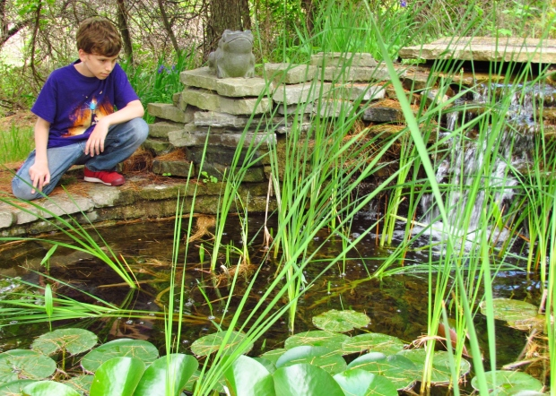 Ryan is a great fan of the frogs of Oakland County--and knowledgeable too!