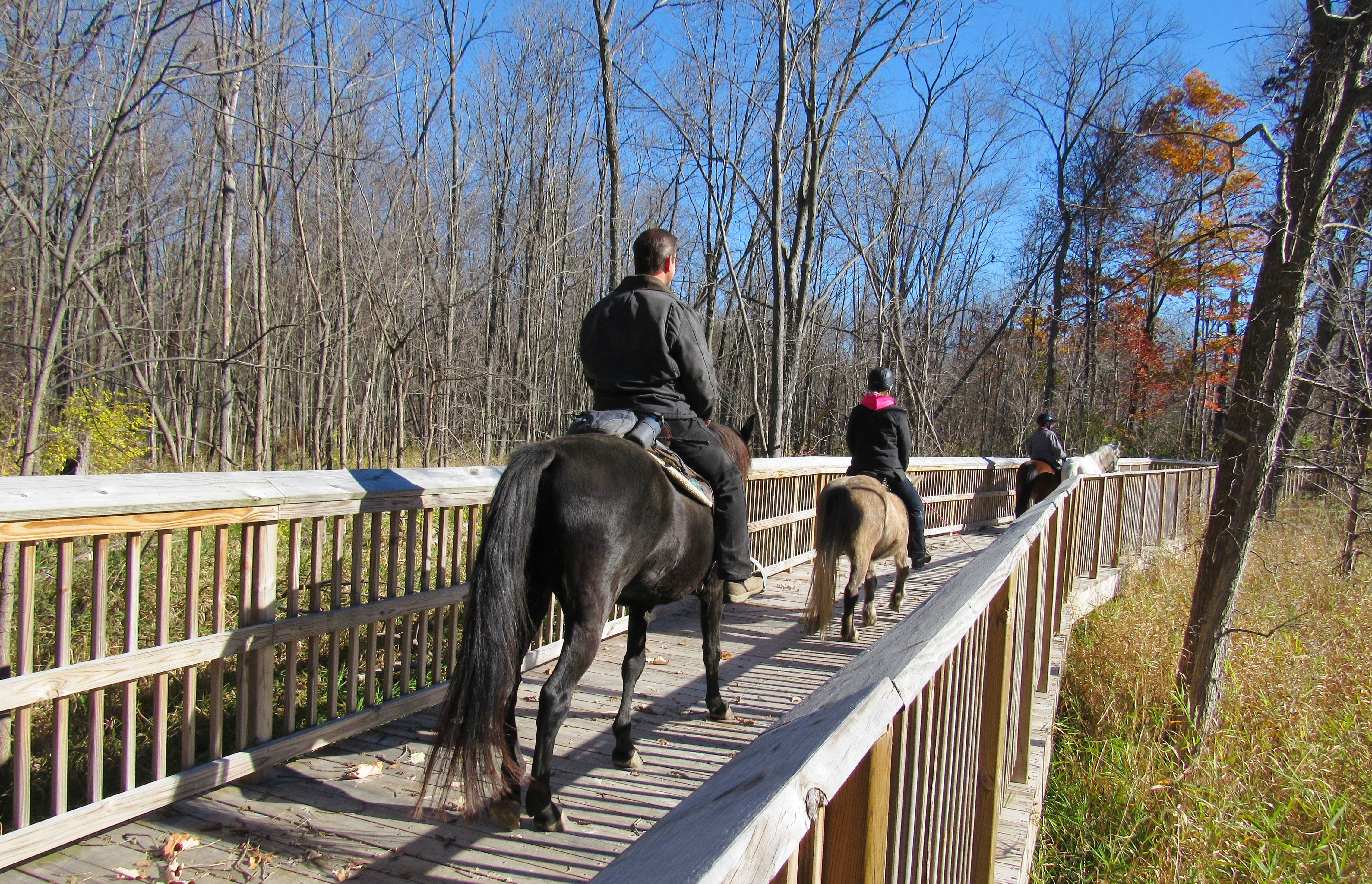Michigan oakland county highland - Almost 7 000 Acres Of Parklands Are Managed By Oakland County Parks With Horse Friendly Trails At Addison Oaks County Park Addison Oaks East Highland Oaks